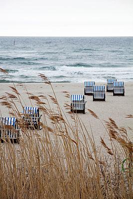 Strandkörbe hinter Reet - p039m1492666 von Christine Höfelmeyer