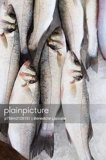 Fresh fisch - p756m2125151 by Bénédicte Lassalle