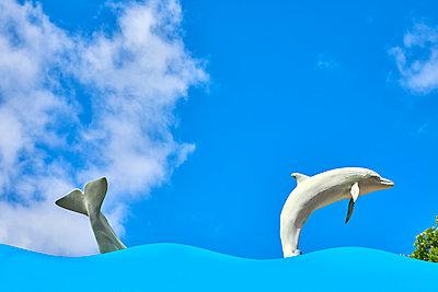 Delfin und Wal - p1299m1584104 von Boris Schmalenberger