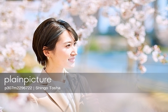 Young Japanese woman and cherry blossoms - p307m2296722 by Shingo Tosha