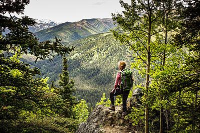 Blick über eine bewaldete Berglandschaft, Alaska, USA - p741m2168718 von Christof Mattes