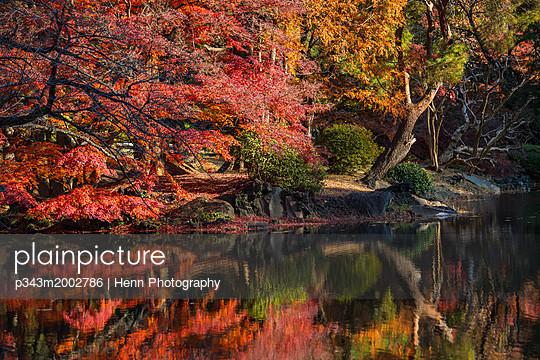 p343m2002786 von Henn Photography