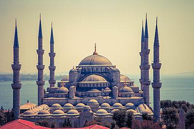 Blue Mosque - p1062m871865 by Viviana Falcomer