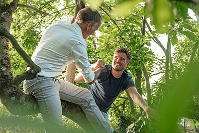 Father holding son's hand while climbing on tree - p300m2275149 by Gustafsson