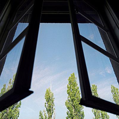 Fenster zum Hof - p3530130 von Stüdyo Berlin