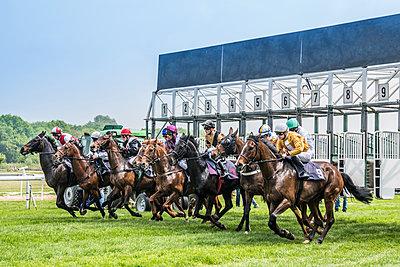 Start beim Pferderennen - p401m1467409 von Frank Baquet