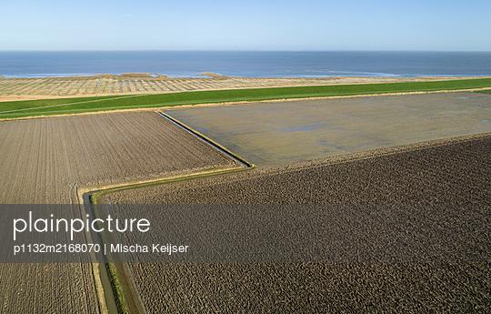 Farmland on the coast - p1132m2168070 by Mischa Keijser