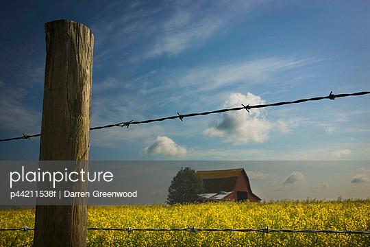 p44211538f von Darren Greenwood