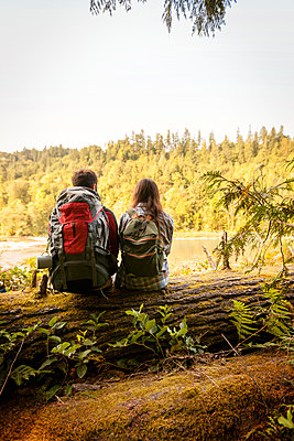 Rear view of couple sitting on fallen tree trunk in forest - p1166m1096467f by Cavan Images