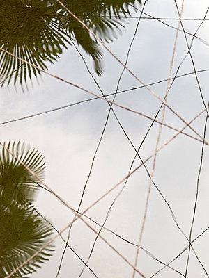 Drähte über einem Teich - p240m880465 von Valerie Wagner