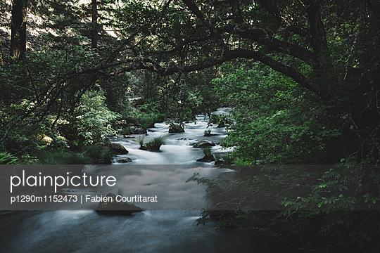Burney Falls, Kalifornien - p1290m1152473 von Fabien Courtitarat