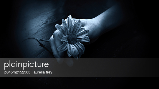 Hand with flower - p945m2152903 by aurelia frey
