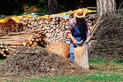 Austria, Tyrol, man chipping - p2680362 by M. Frank