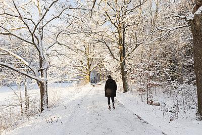 Rear view of woman walking in snow in Jarfalla, Sweden - p352m1536581 by Calle Artmark