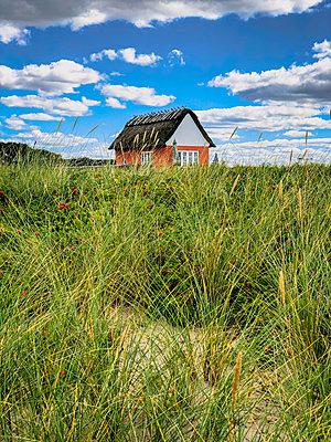 Summer house in the dunes - p382m2283970 by Anna Matzen