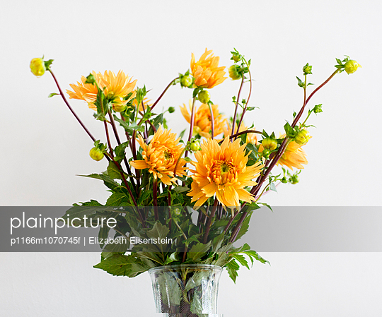 Vase with yellow flowers in white background