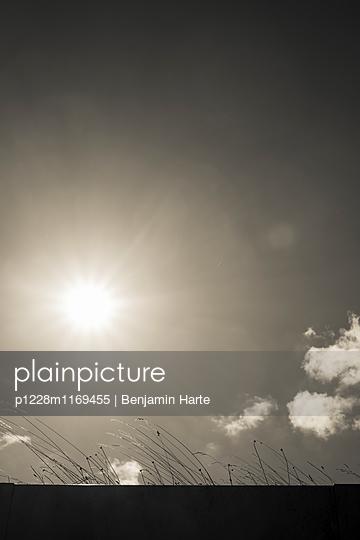 p1228m1169455 von Benjamin Harte