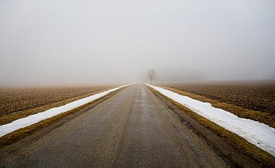Nebel - p395m1007820 von John Weber