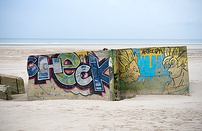 WW11 Hitler's Atlantic Wall Remnants Berck France. - p1072m1105437 by Alison Morton