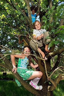 kids play in the woods - p1132m1152746 by Mischa Keijser