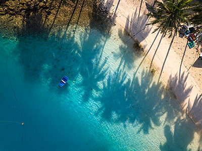 Beach with palm trees,ÊThulusdhoo, Male, Maldives - p343m2047259 by Konstantin Trubavin
