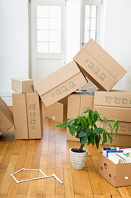 Stack of cardboard boxes - p6090287f by DRESDEN photography