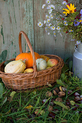 Herbstdekoration - p454m764454 von Lubitz + Dorner