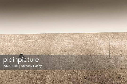 p37816693 von Anthony Hatley