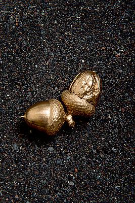 Kombination aus goldener Eichel und Walnuss - p451m1169065 von Anja Weber-Decker