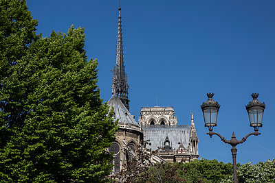 Notre Dame de Paris - p940m1132496 by Bénédite Topuz