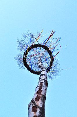 Maypole - p885m1087438 by Oliver Brenneisen