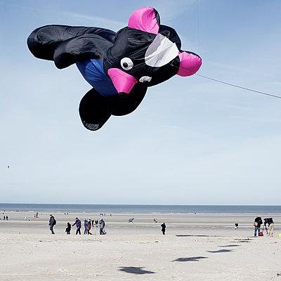 Drachenfest - p1287m1183453 von Christophe Darbelet