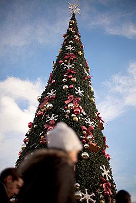 Weihnachtsbaum einmal anders - p5960077 von Ariane Galateau