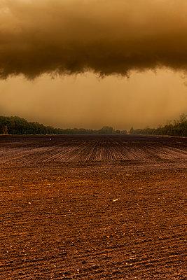 Fruchtbarer Ackerboden - p248m2147903 von BY