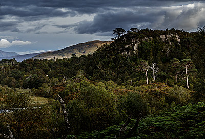 Highlands - p910m2008149 by Philippe Lesprit