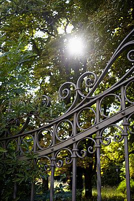 Iron gate - p464m918832 by Elektrons 08