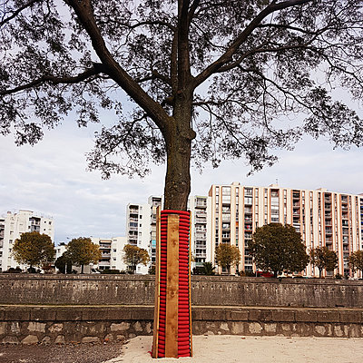 Single tree in the city - p1105m2168857 by Virginie Plauchut