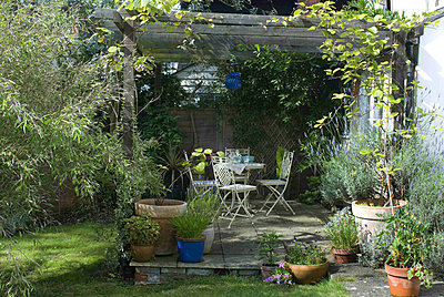 Patio area in back garden with white ornamental metal garden furniture and blue glass lantern hanging from rustic arbour - p349m790640 by Polly Eltes