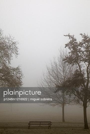 Clapham Commons - p1248m1216922 von miguel sobreira