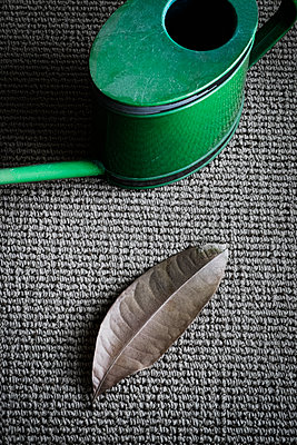 Watering can and leaf - p1149m1194413 by Yvonne Röder