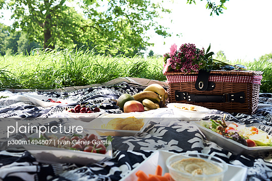 Healthy picnic in a park in summer