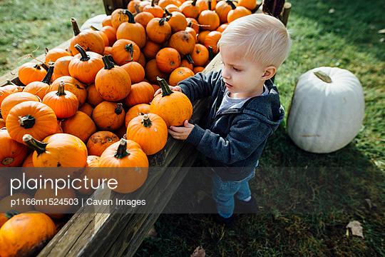 p1166m1524503 von Cavan Images