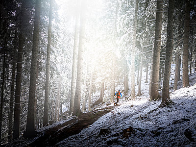 Male athlete running in forest during winter - p300m2275679 by Matthias Aletsee