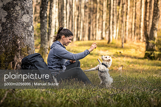 Female hiker playing with dog while sitting in forest - p300m2256996 by Manuel Sulzer