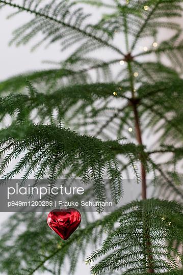 Schmuck am Baum - p949m1200289 von Frauke Schumann
