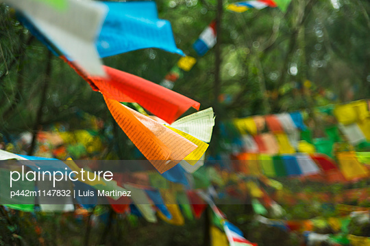 p442m1147832 von Luis Martinez