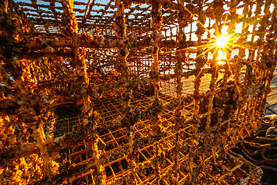 Sunrise seen through lobster trap on dock in summer, Bar Harbor, Maine - p1166m2088166 by Cavan Images