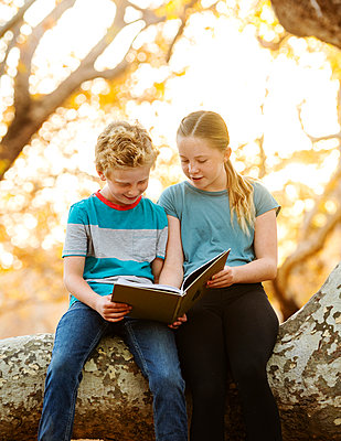 United States, California, Mission Viejo, Boy (10-11) and girl (12-13) sitting on tree branch and reading book - p1427m2271663 by Erik Isakson