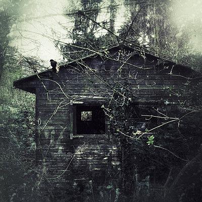 Abandoned house with garden bird, Wuppertal, Germany - p300m1009276f by Dirk Wüstenhagen