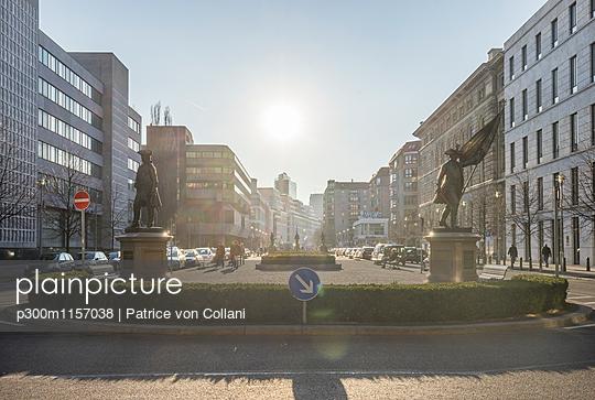 p300m1157038 von Patrice von Collani